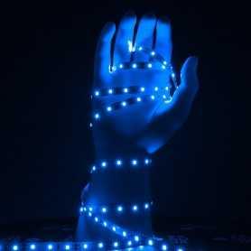 Ruban LED bleu 5m 60led/m 12V gamme ACCESS