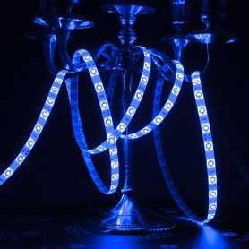 Ruban LED bleu 5m étanche IP54 60led/m 12V gamme ACCESS