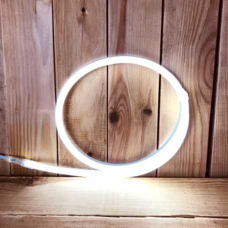Néon LED 220V direct blanc froid étanche. Vendu au mètre