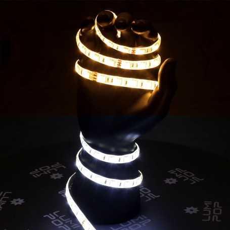 Ruban LED CCT blanc variable de 2m50