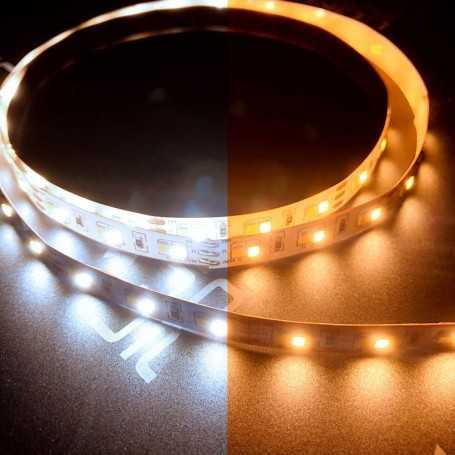Ruban LED CCT 12V blanc variable 120LED/m 2m50. Gamme ACCESS